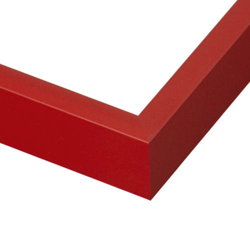 Modern simple profile red metal frame