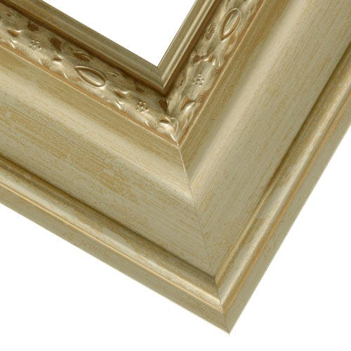 Gold Canvas Picture Frame With Decorative Trim