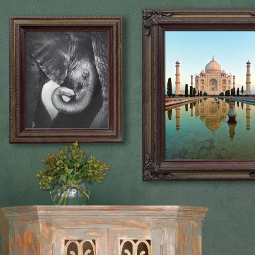 9ETS frame with baby elephant in rustic room.