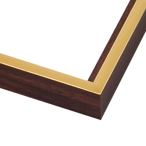 Modern Walnut Canvas Floater Frame With Gold Face