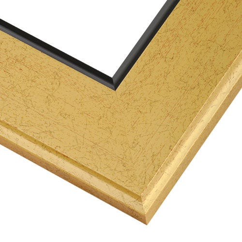 Gold Picture Frame With Flat Brushed Finish And Black Inner Lip GG2
