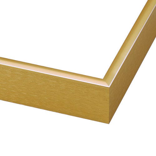 Contemporary Gold Metal Picture Frame With Rounded Profile NCGLD