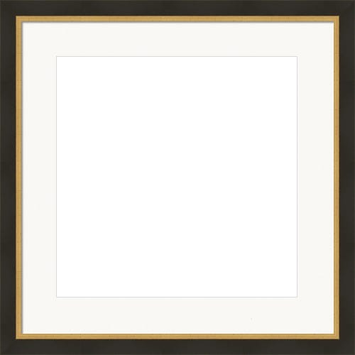Modern Black Picture Frame With Brushed Gold Lip And White Mat Adrian