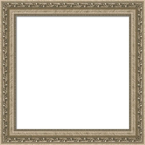 Traditional Silver Picture Frame With Beaded Lip and Botanical Motif Capulet