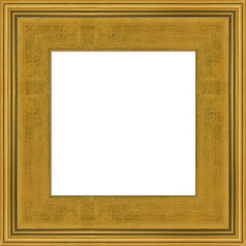 Classic Gold Plein Air Picture Frame Clark