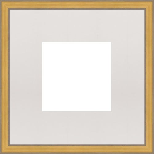 Gold Picture Frame With Gray Patina And White Mat Nefertiti
