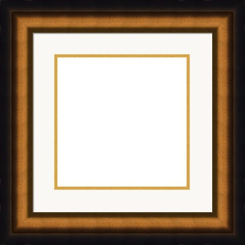 Classic Midnight Black Picture Frame With Gold Accent And Bright White Mat Lionel