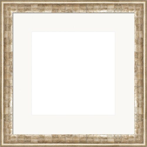 Modern Seashell Picture Frame With White Mat Penelope