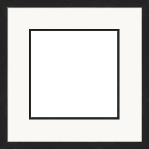 Classic Satin Black Picture Frame With White and Black Mats Mondrian