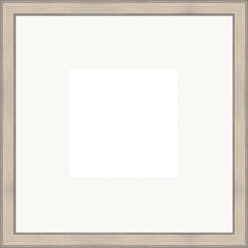 Brushed Silver Picture Frame With White Mat Dorothea