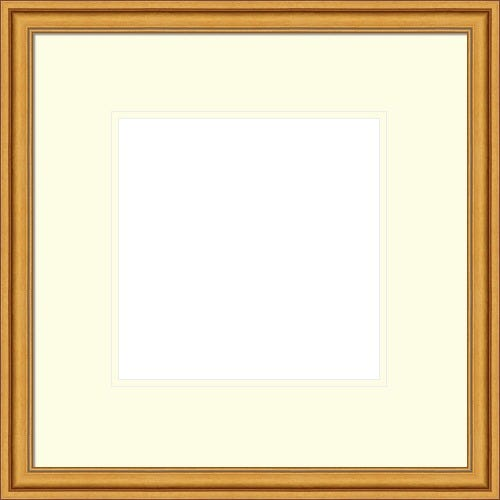 Antique Gold Picture Frame With White Mat Rothschild