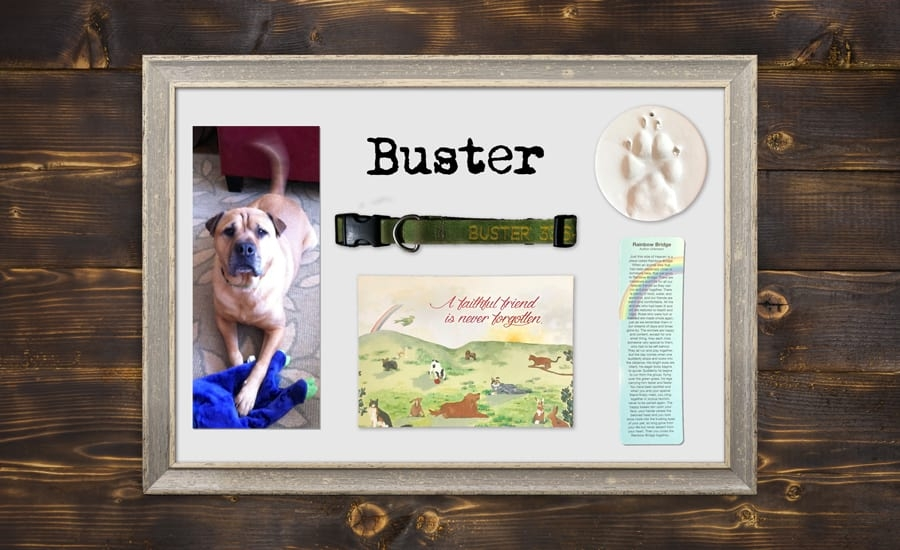 Shadowbox picture frame with pet memorial items