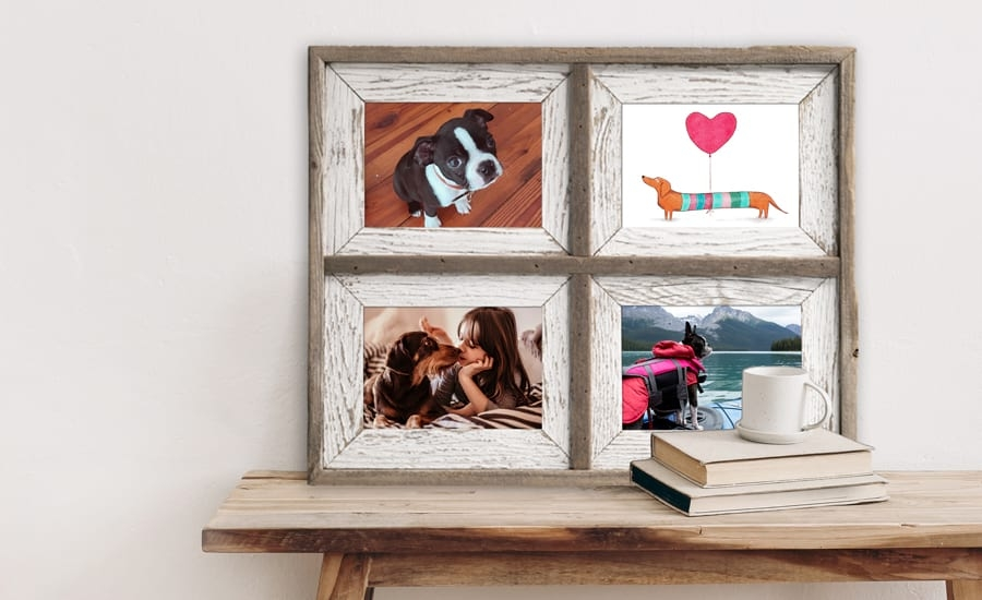 Collage picture frames of various pets and family members