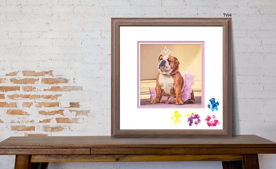 Framed Dog with Paw Prints on Mat