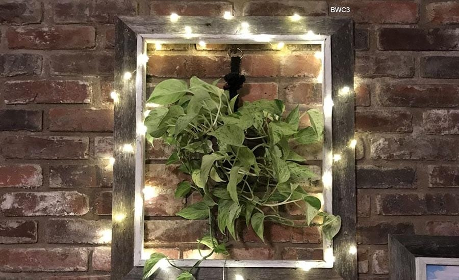 DIY Potted Plant in Picture Frame