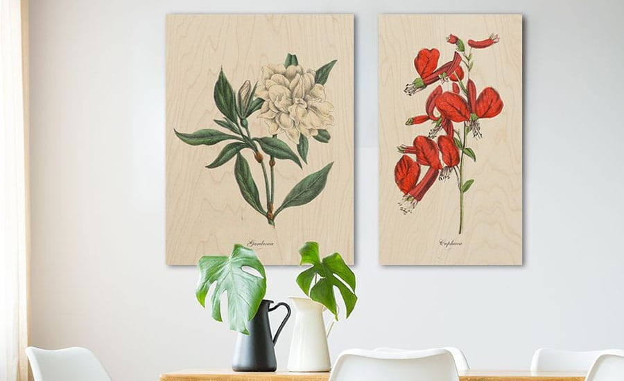 Plant Illustrations Printed on Wood