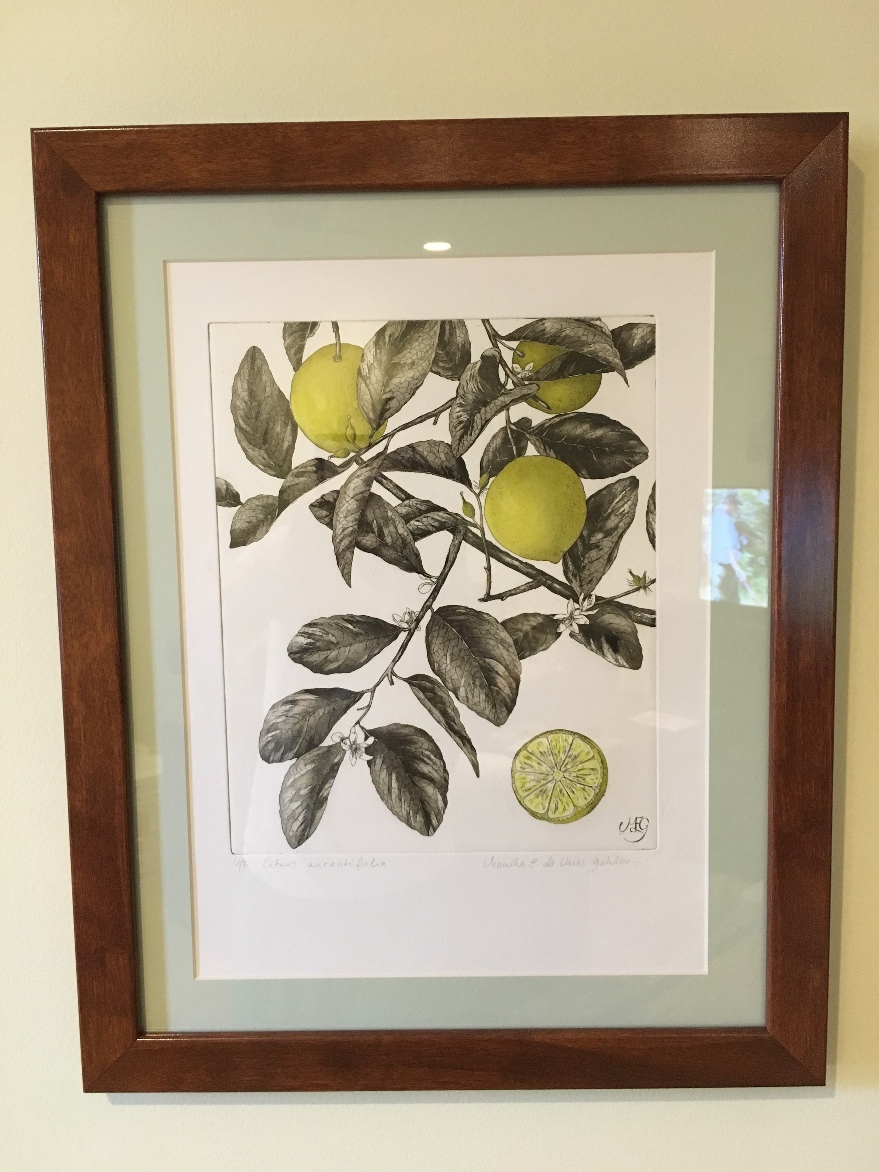 Fruit Tree Art with Blue Mat and Brown Wood Frame